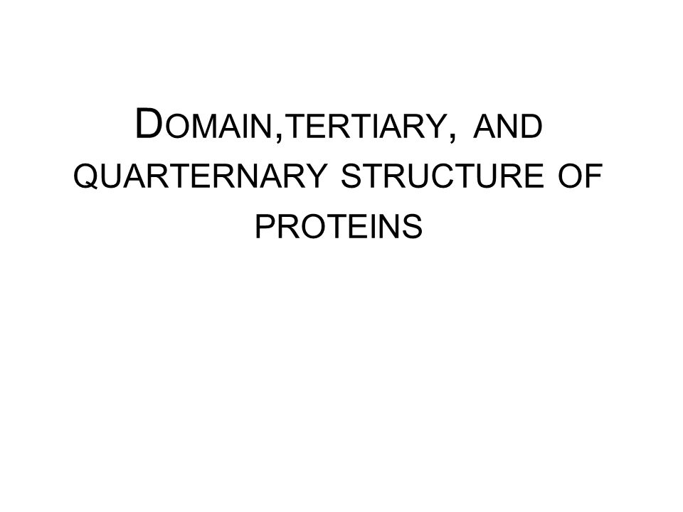 D OMAIN, TERTIARY, AND QUARTERNARY STRUCTURE OF PROTEINS