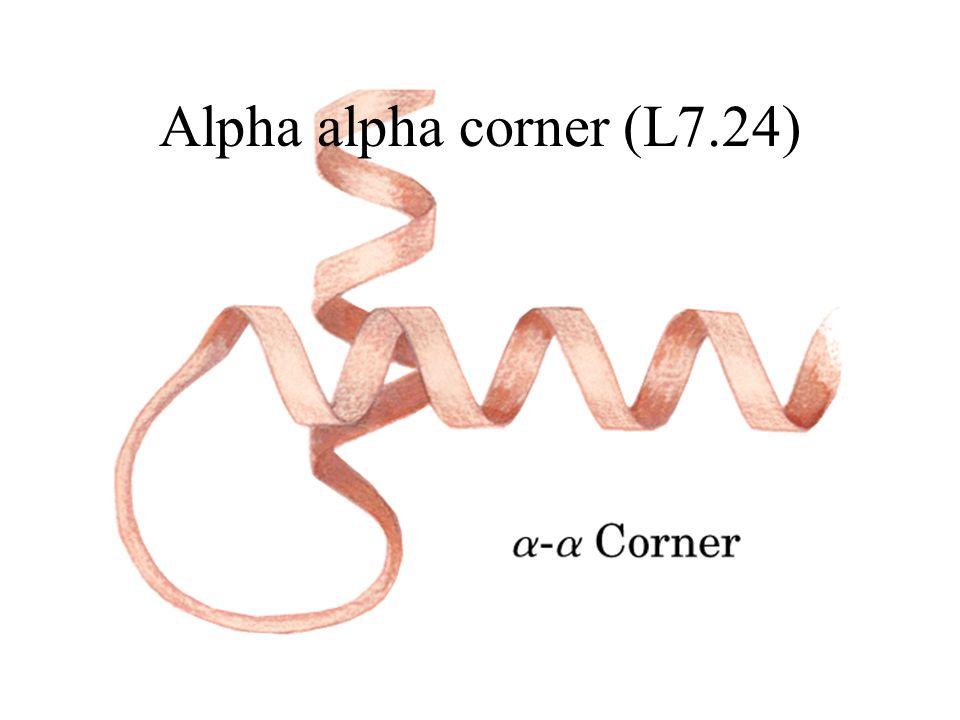 Alpha alpha corner (L7.24)