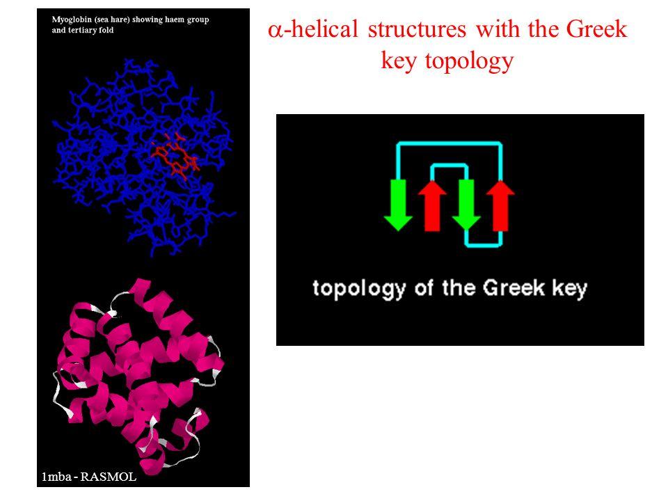 -helical structures with the Greek key topology Tego typu domeny spotykane są przede wszystkim w białkach globinowych. Zbudowane są z dwóch warstw -he