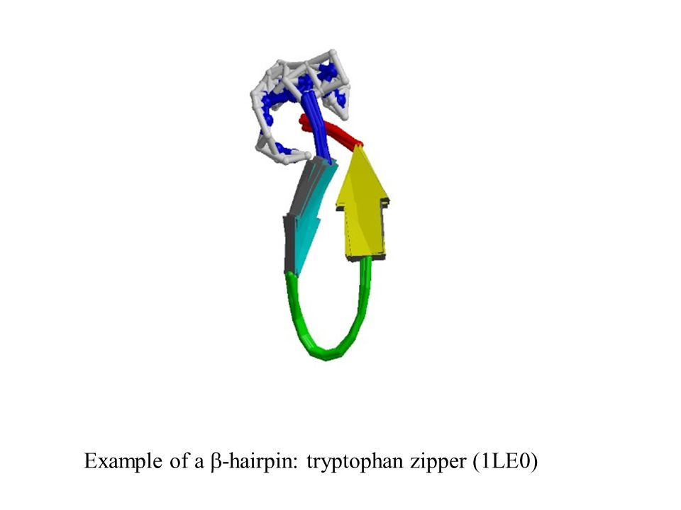 Example of a -hairpin: tryptophan zipper (1LE0)