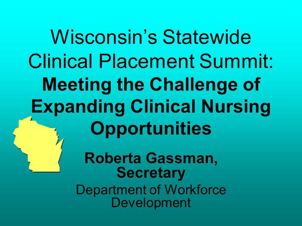 April 11, 200791 Clinical Placement On-line Software Elizabeth Biel Program Planning and Development Director Healthcare Education-Industry Partnership-Minnesota