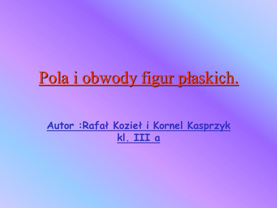 Autor :Rafał Kozieł i Kornel Kasprzyk kl. III a