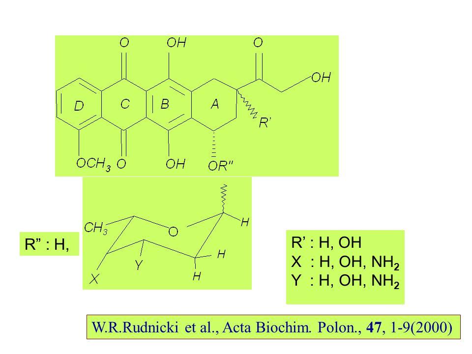 R : H, R : H, OH X : H, OH, NH 2 Y : H, OH, NH 2 W.R.Rudnicki et al., Acta Biochim.