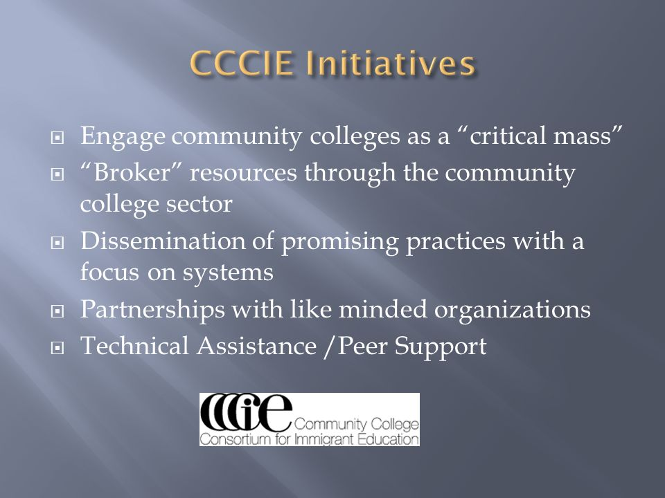 Engage community colleges as a critical mass Broker resources through the community college sector Dissemination of promising practices with a focus o