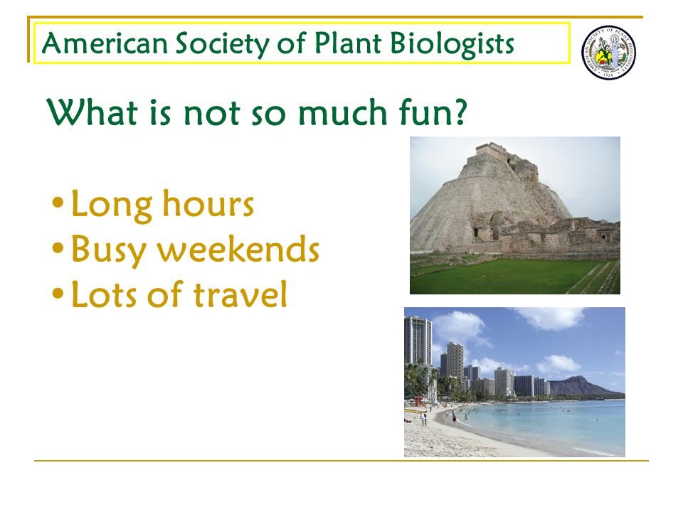 American Society of Plant Biologists What is not so much fun? Long hours Busy weekends Lots of travel