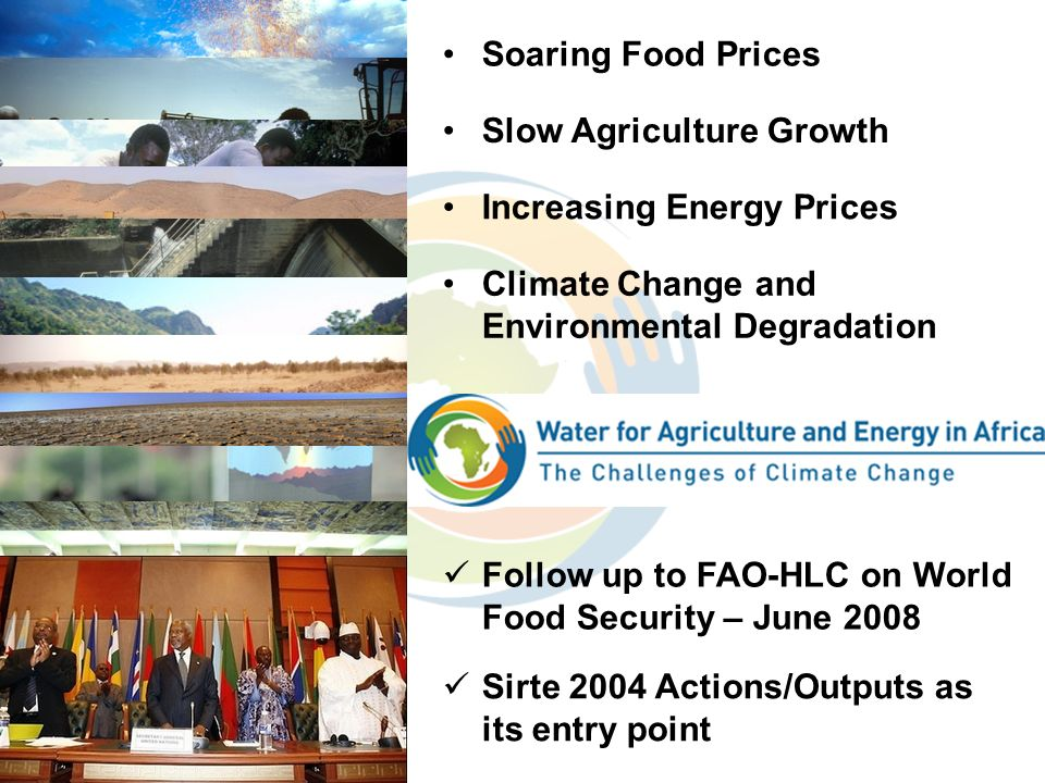 OUTCOMES Soaring Food Prices Slow Agriculture Growth Climate Change and Environmental Degradation Increasing Energy Prices Follow up to FAO-HLC on Wor