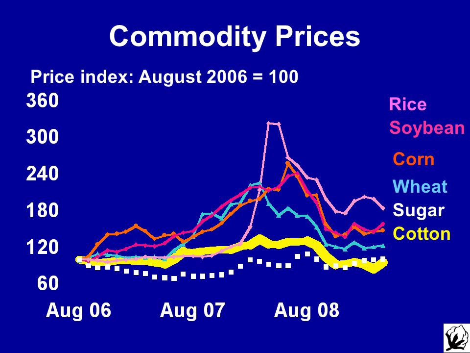 Commodity Prices Price index: August 2006 = 100 Rice Corn Soybean Cotton Wheat Sugar