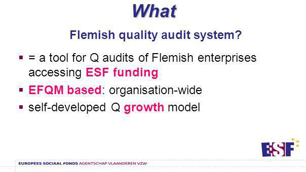 Why Why quality management for the ESF actors.