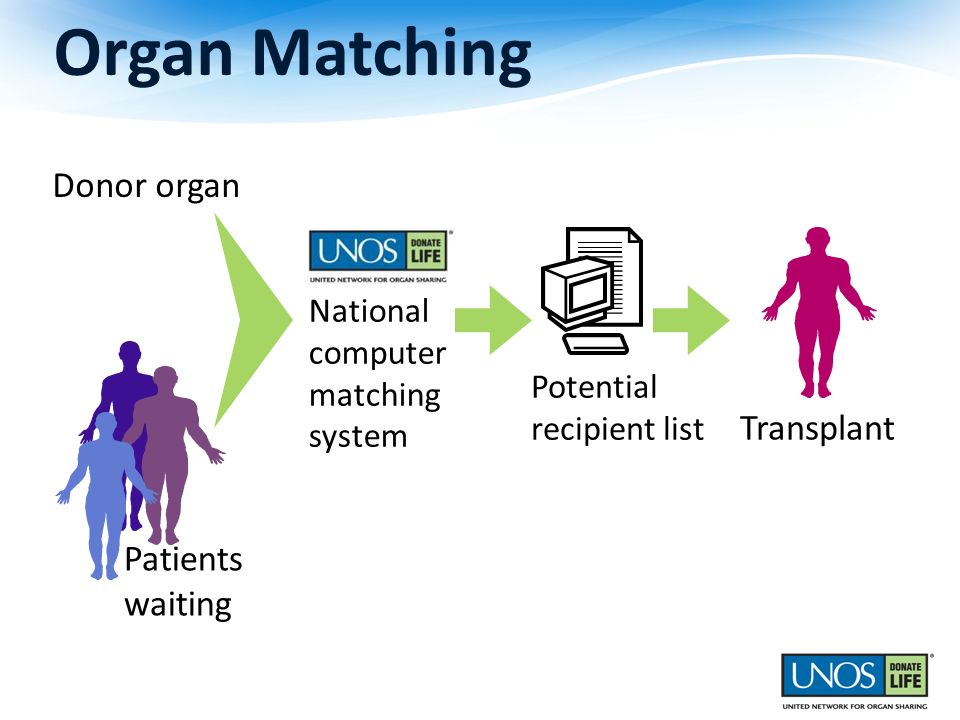 Patients waiting Organ Matching Donor organ Transplant National computer matching system Potential recipient list