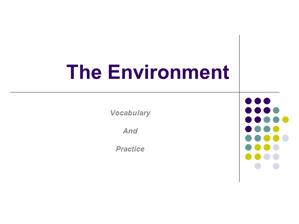 The Environment Vocabulary And Practice