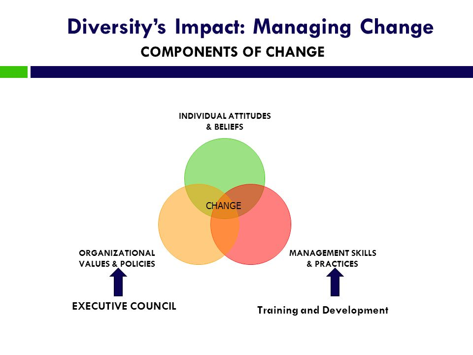 Diversitys Impact: Managing Change INDIVIDUAL ATTITUDES & BELIEFS MANAGEMENT SKILLS & PRACTICES ORGANIZATIONAL VALUES & POLICIES CHANGE EXECUTIVE COUN
