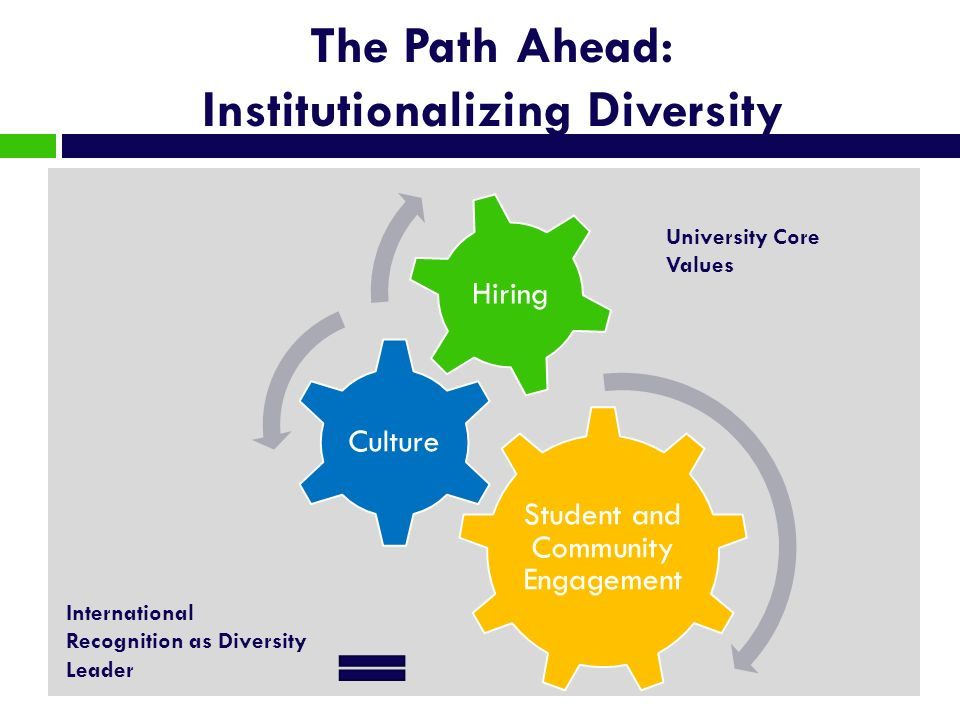 The Path Ahead: Institutionalizing Diversity Student and Community Engagement Culture Hiring International Recognition as Diversity Leader University