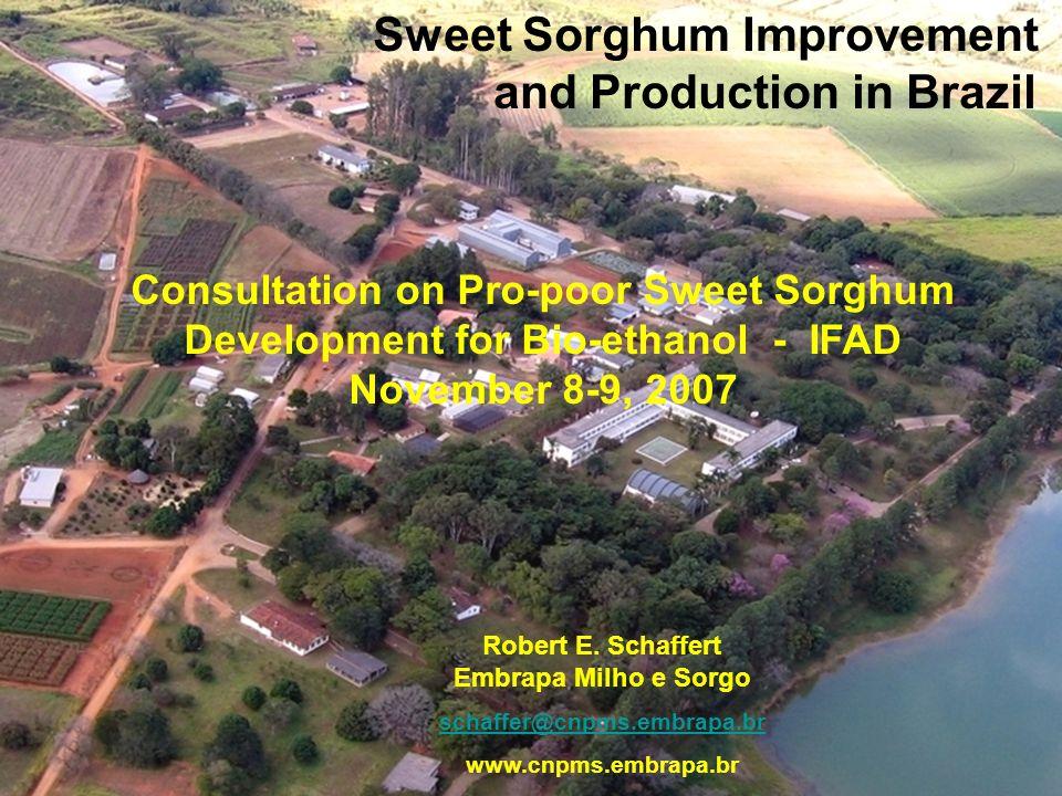 Sweet Sorghum Improvement and Production in Brazil Robert E. Schaffert Embrapa Milho e Sorgo schaffer@cnpms.embrapa.br www.cnpms.embrapa.br Consultati