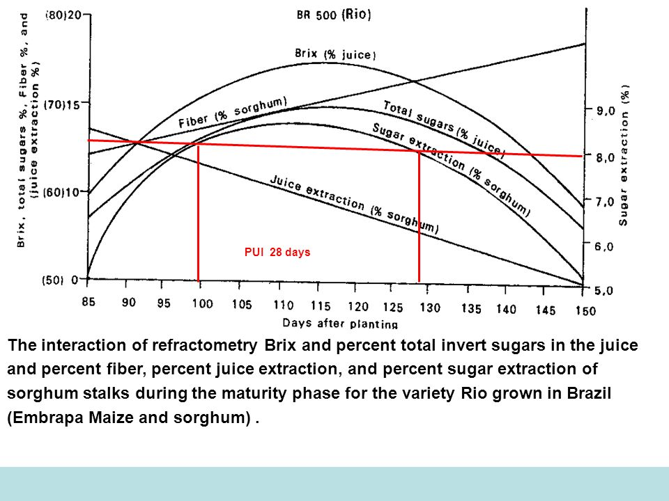 The interaction of refractometry Brix and percent total invert sugars in the juice and percent fiber, percent juice extraction, and percent sugar extr