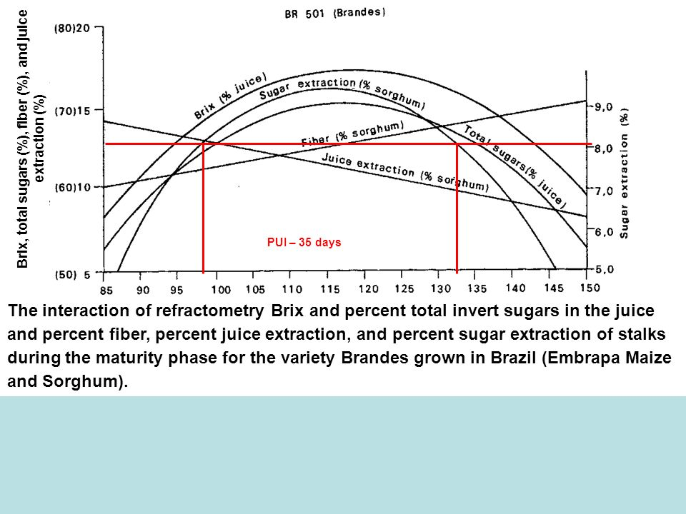 Sugar extraction (%) Brix, total sugars (%), fiber (%), and juice extraction (%) The interaction of refractometry Brix and percent total invert sugars