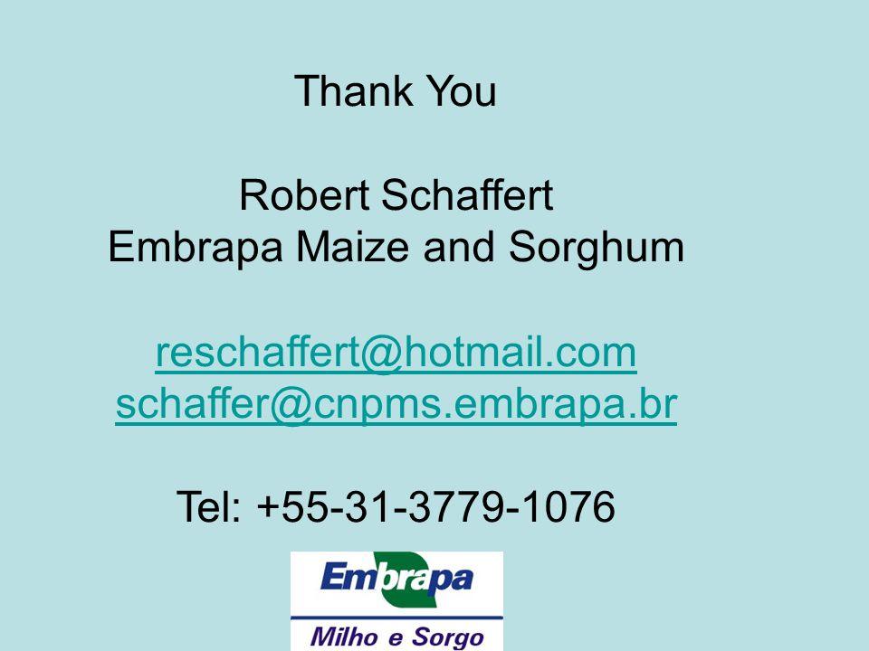 Thank You Robert Schaffert Embrapa Maize and Sorghum reschaffert@hotmail.com schaffer@cnpms.embrapa.br Tel: +55-31-3779-1076