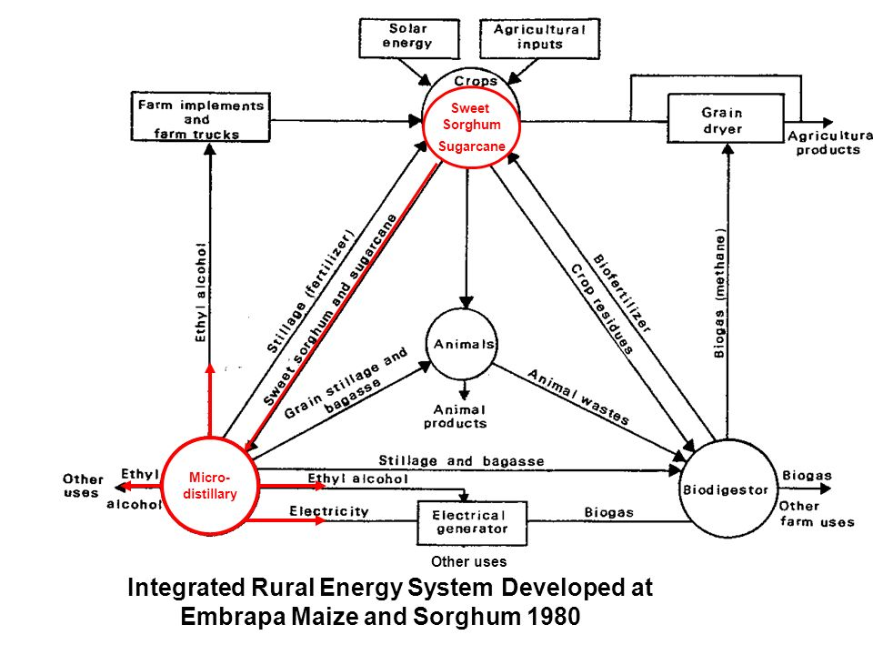 xxxxxxx x Integrated rural energy system developed at Embrapa Maize and Sorghum 1980 Integrated Rural Energy System Developed at Embrapa Maize and Sor