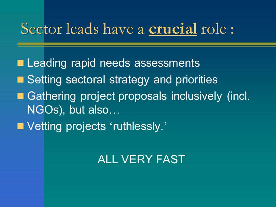 Sector leads have a crucial role : Leading rapid needs assessments Setting sectoral strategy and priorities Gathering project proposals inclusively (i