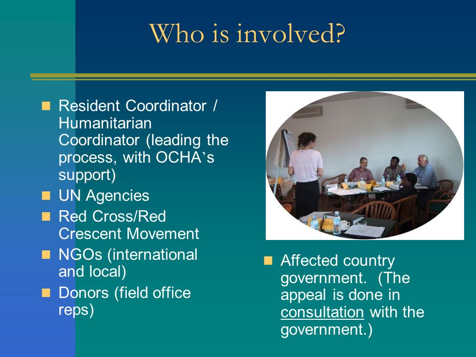 Who is involved? Resident Coordinator / Humanitarian Coordinator (leading the process, with OCHA s support) UN Agencies Red Cross/Red Crescent Movemen