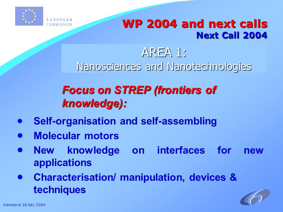 Warszawa 18 luty 2004 Focus on STREP (frontiers of knowledge): Self-organisation and self-assembling Molecular motors New knowledge on interfaces for