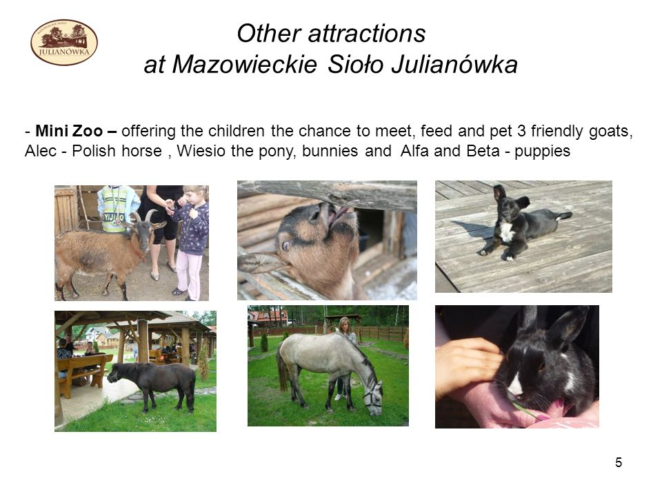 5 Other attractions at Mazowieckie Sioło Julianówka - Mini Zoo – offering the children the chance to meet, feed and pet 3 friendly goats, Alec - Polish horse, Wiesio the pony, bunnies and Alfa and Beta - puppies