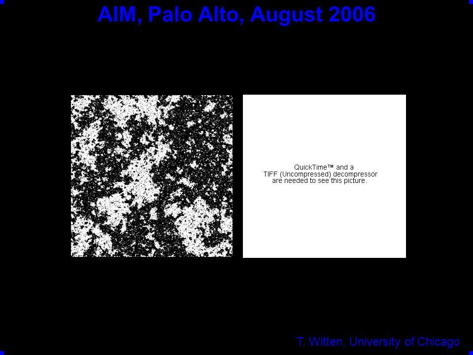 AIM, Palo Alto, August 2006 T. Witten, University of Chicago