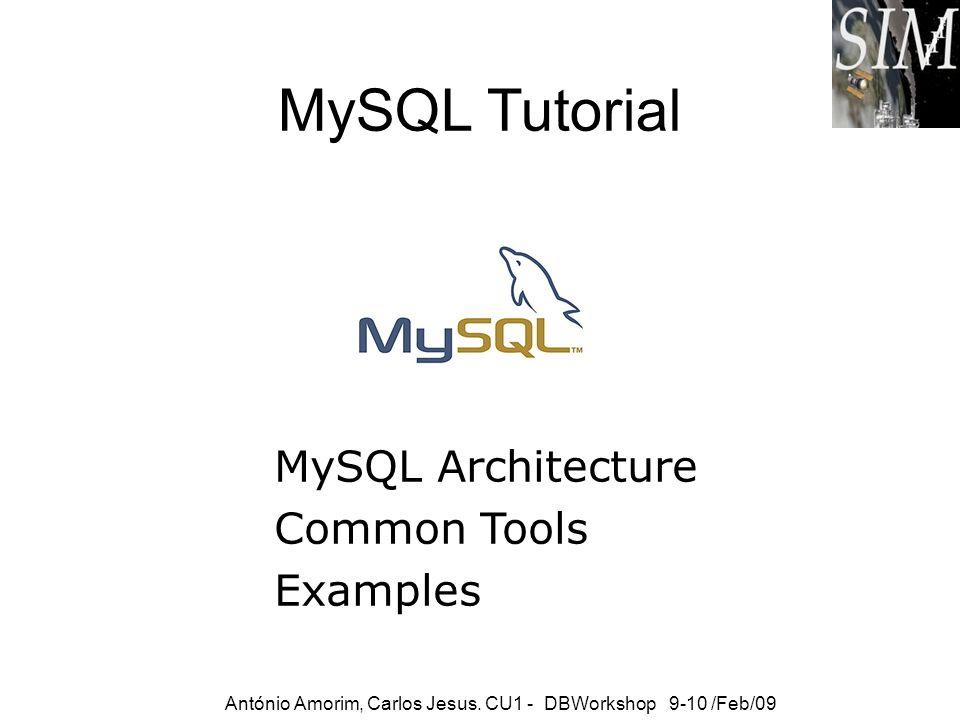 MySQL Tutorial MySQL Architecture Common Tools Examples António Amorim, Carlos Jesus. CU1 - DBWorkshop 9-10 /Feb/09