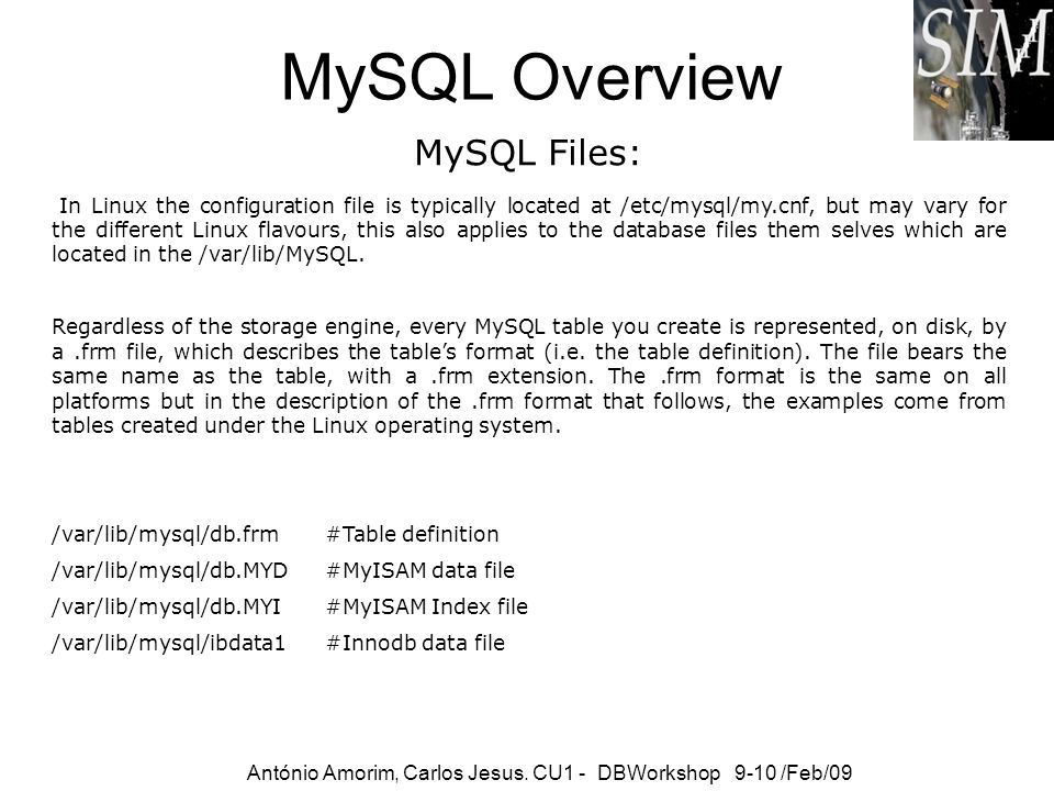 MySQL Overview MySQL Files: António Amorim, Carlos Jesus. CU1 - DBWorkshop 9-10 /Feb/09 wit s In Linux the configuration file is typically located at