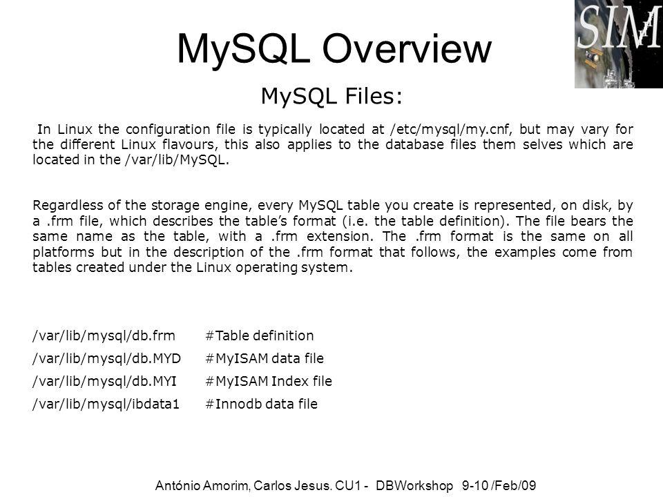 MySQL Command Line tools António Amorim, Carlos Jesus.