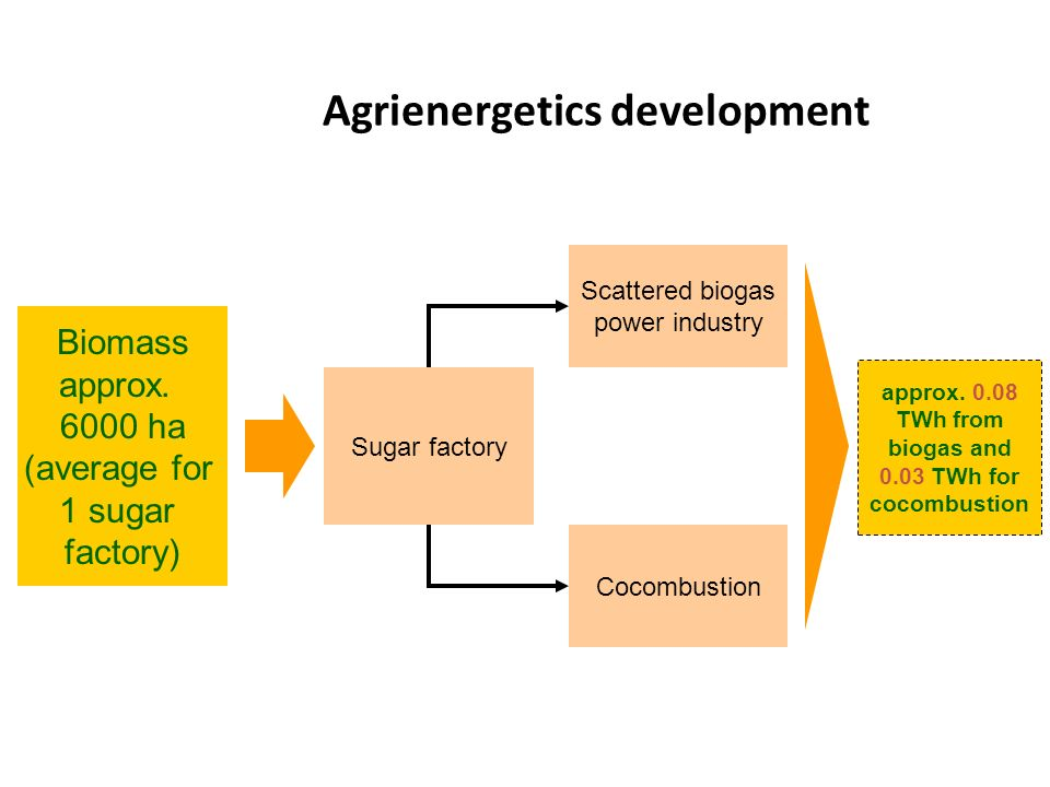 Agrienergetics development Sugar factory Biomass approx. 6000 ha (average for 1 sugar factory) Scattered biogas power industry Cocombustion approx. 0.