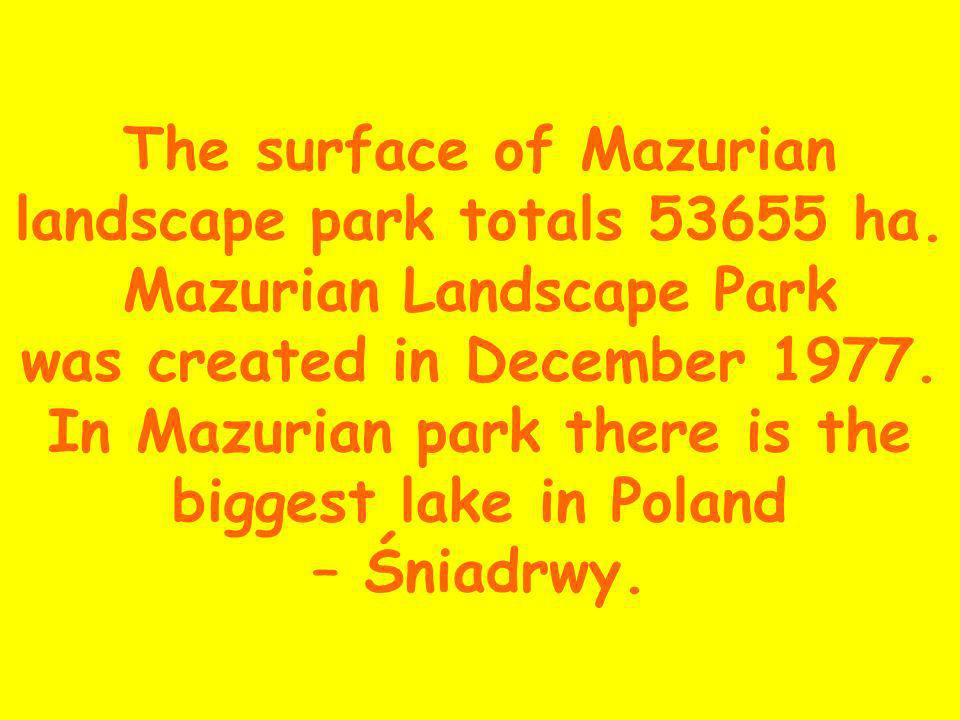 The surface of Mazurian landscape park totals 53655 ha.