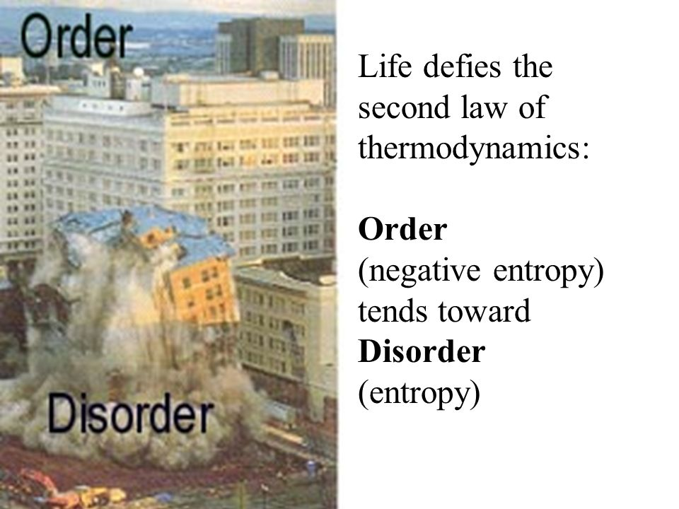 Life defies the second law of thermodynamics: Order (negative entropy) tends toward Disorder (entropy)