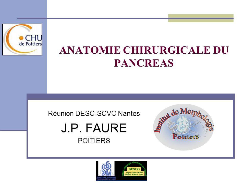 ANATOMIE CHIRURGICALE DU PANCREAS Réunion DESC-SCVO Nantes J.P. FAURE POITIERS