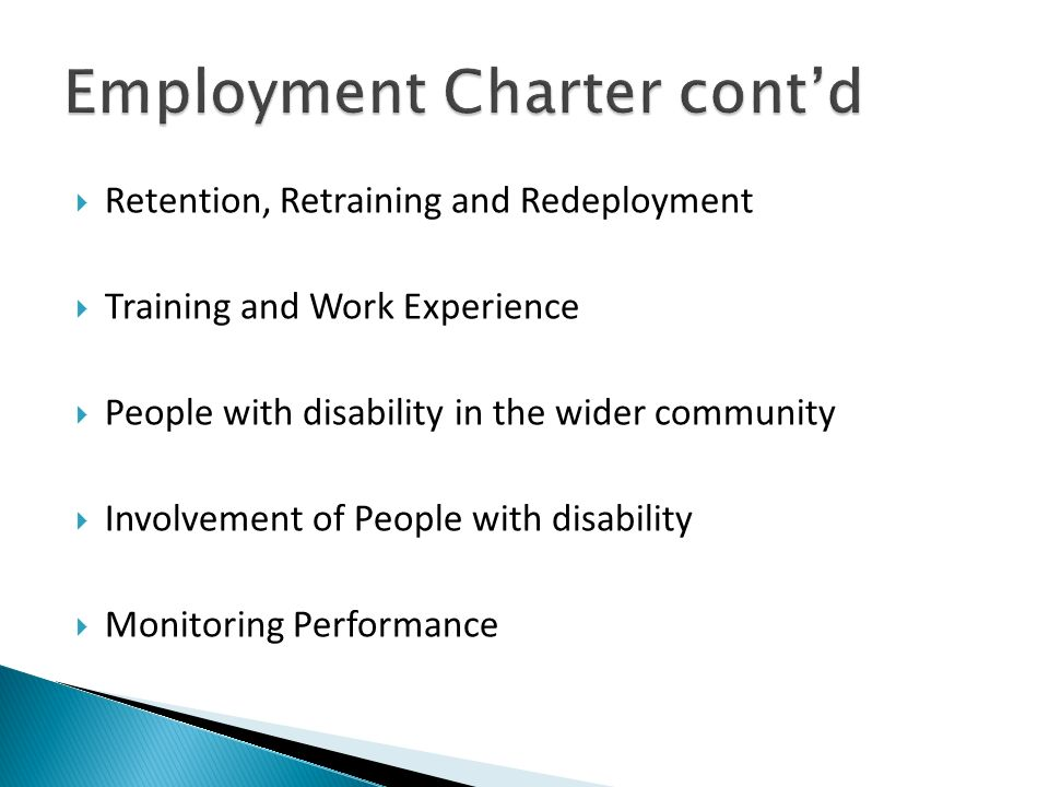 Retention, Retraining and Redeployment Training and Work Experience People with disability in the wider community Involvement of People with disabilit