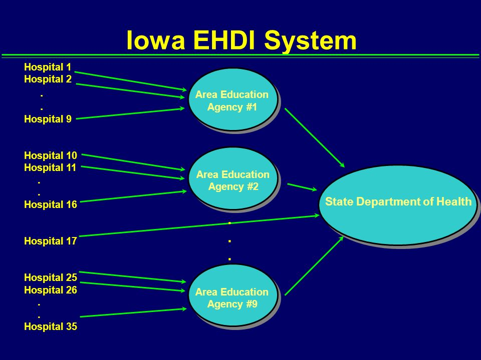 Iowa EHDI System State Department of Health Hospital 1 Hospital 2.. Hospital 9 Hospital 10 Hospital 11.. Hospital 16 Hospital 17 Hospital 25 Hospital