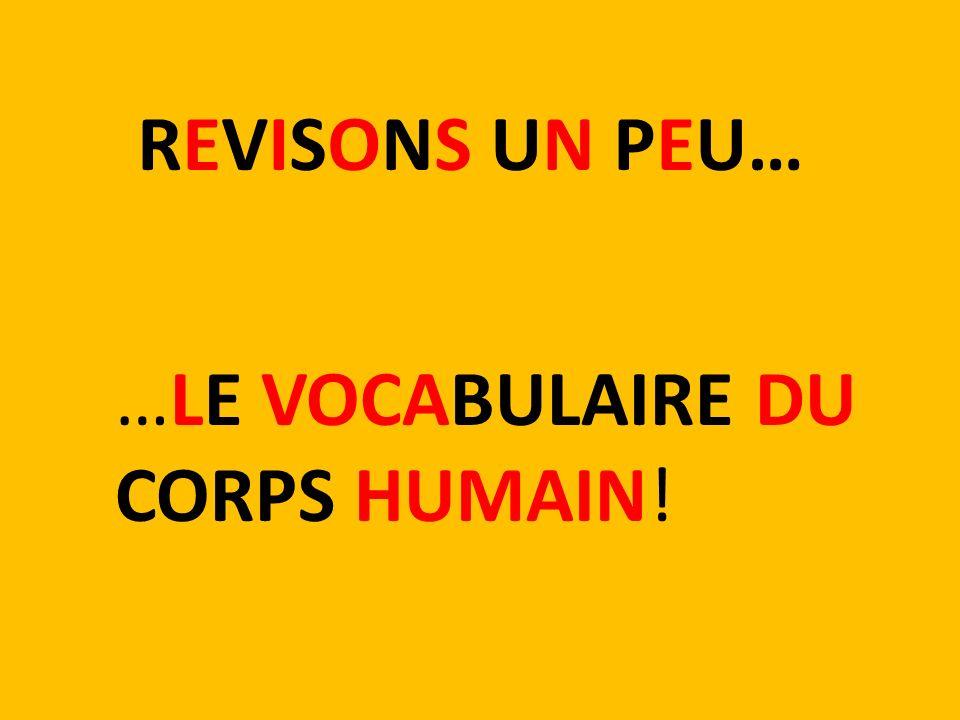 REVISONS UN PEU… …LE VOCABULAIRE DU CORPS HUMAIN!