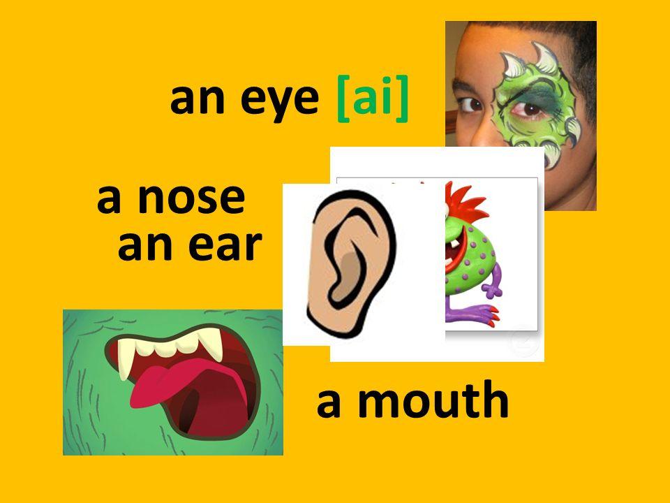 an eye [ai] a mouth a nose an ear