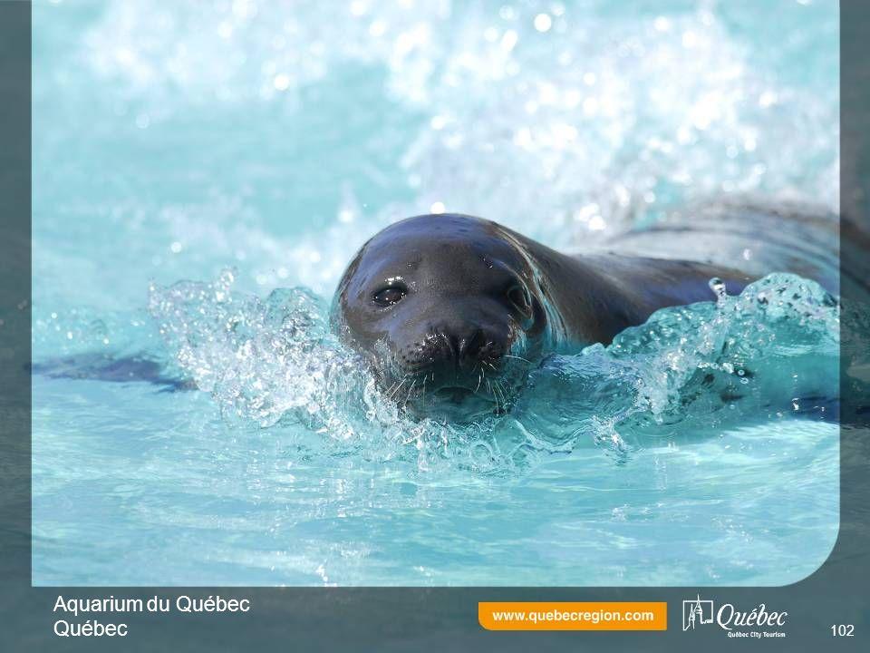 Aquarium du Québec Québec 102