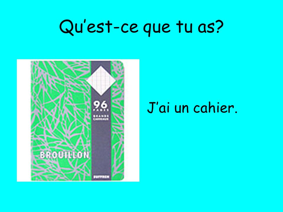 Quest-ce que tu as? Jai un cahier.