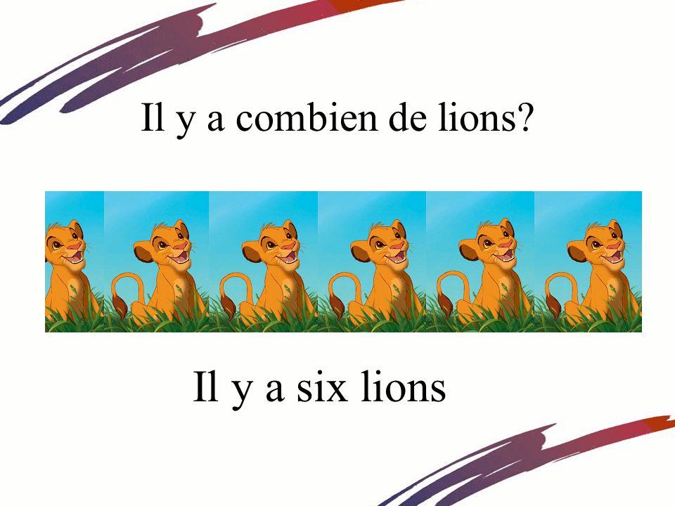 Il y a combien de lions? Il y a six lions