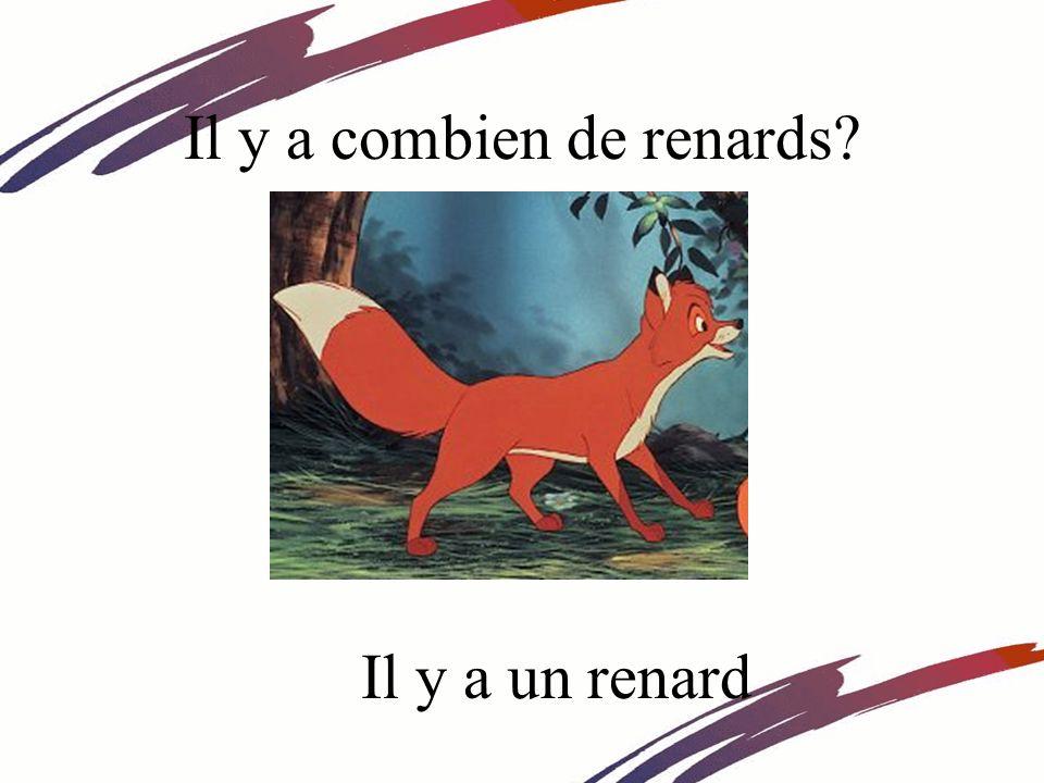 Il y a combien de renards? Il y a un renard