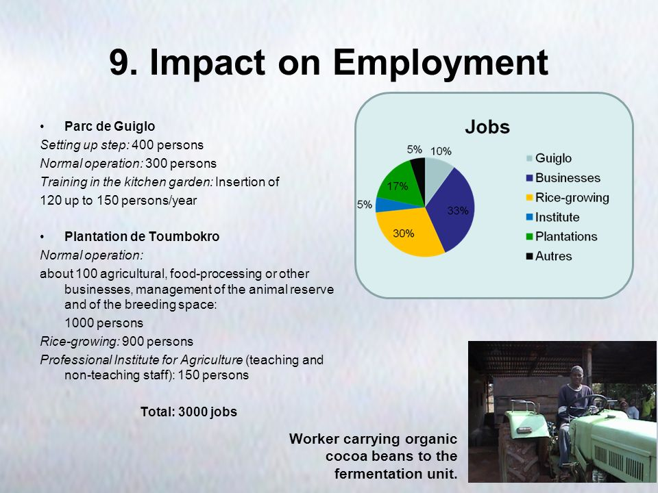 9. Impact on Employment Parc de Guiglo Setting up step: 400 persons Normal operation: 300 persons Training in the kitchen garden: Insertion of 120 up