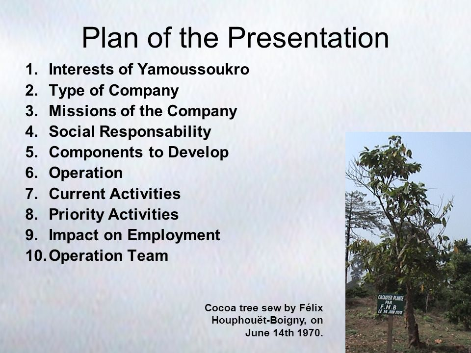 Plan of the Presentation 1.Interests of Yamoussoukro 2.Type of Company 3.Missions of the Company 4.Social Responsability 5.Components to Develop 6.Operation 7.Current Activities 8.Priority Activities 9.Impact on Employment 10.Operation Team Cocoa tree sew by Félix Houphouët-Boigny, on June 14th 1970.