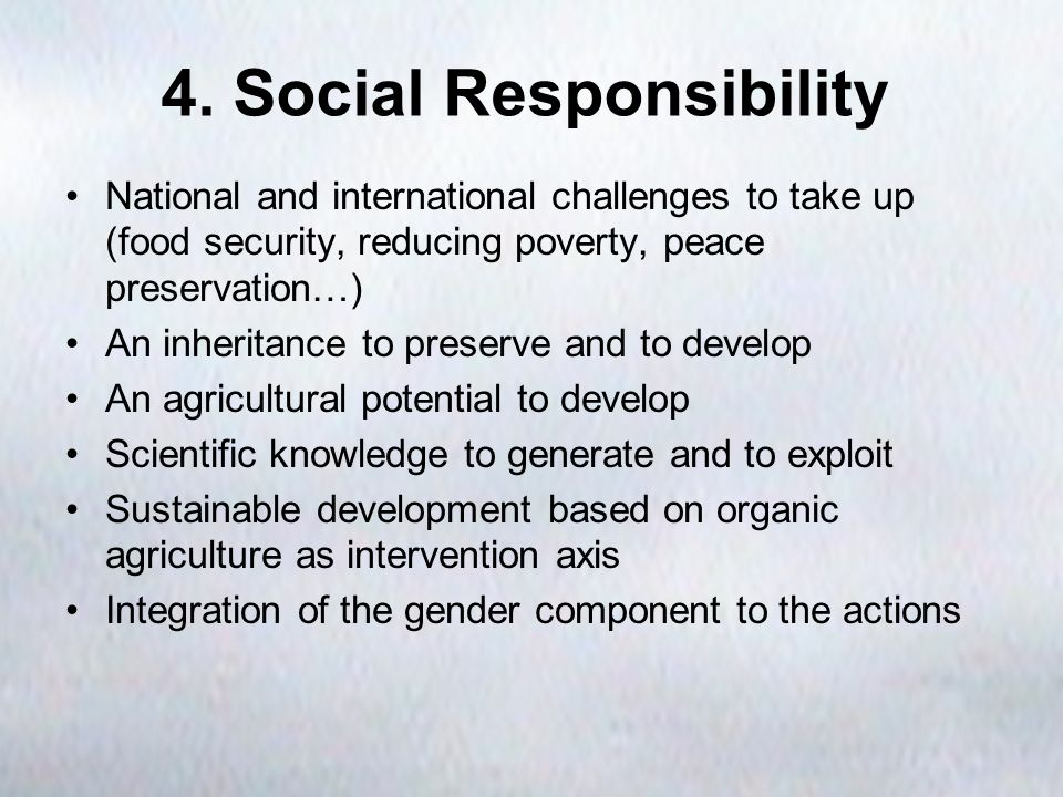 4. Social Responsibility National and international challenges to take up (food security, reducing poverty, peace preservation…) An inheritance to pre