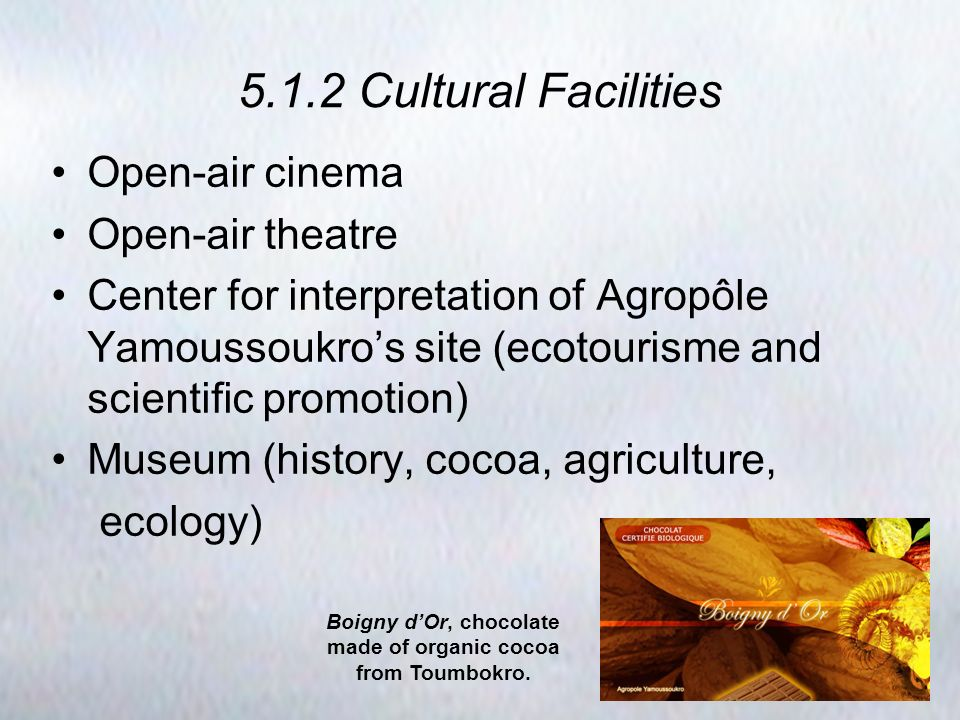 5.1.2 Cultural Facilities Open-air cinema Open-air theatre Center for interpretation of Agropôle Yamoussoukros site (ecotourisme and scientific promotion) Museum (history, cocoa, agriculture, ecology) Boigny dOr, chocolate made of organic cocoa from Toumbokro.