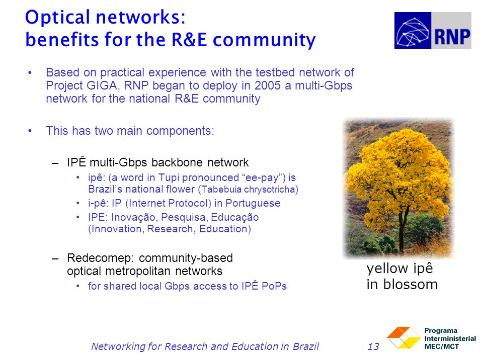 Networking for Research and Education in Brazil13 Optical networks: benefits for the R&E community Based on practical experience with the testbed netw
