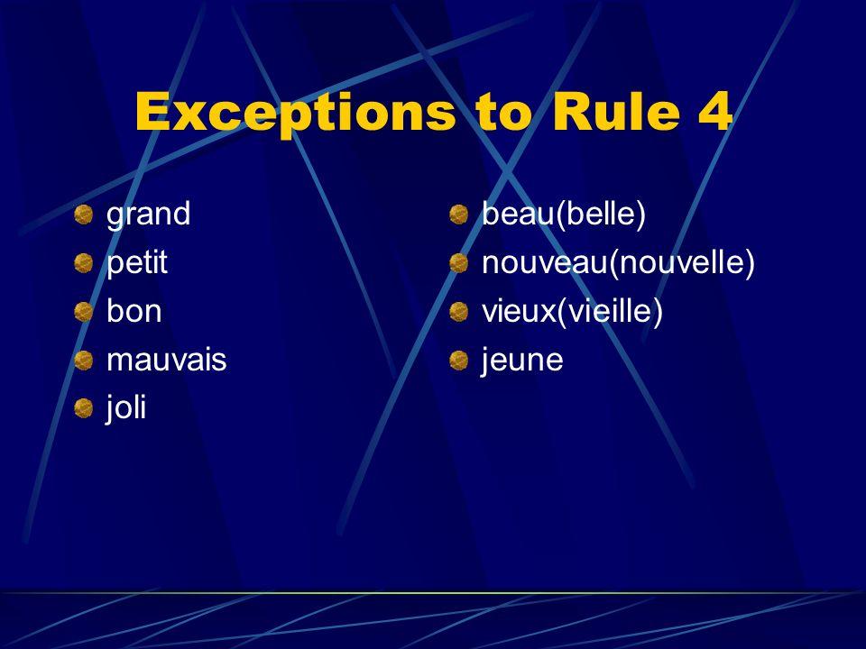 Exceptions to Rule 4 grand petit bon mauvais joli beau(belle) nouveau(nouvelle) vieux(vieille) jeune