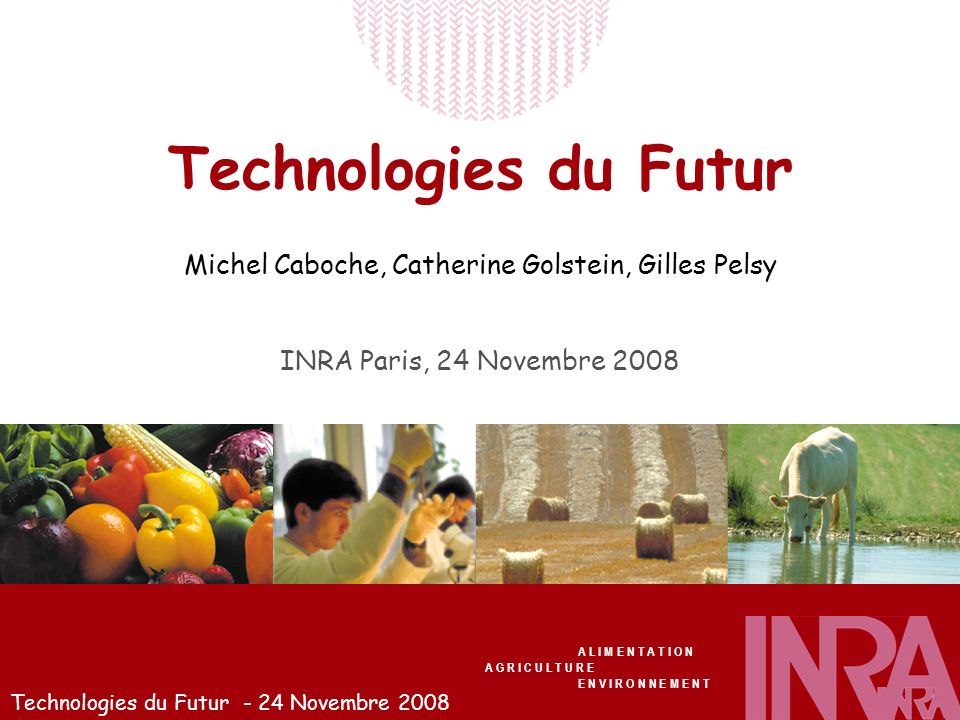 Technologies du Futur - 24 Novembre 2008 Technologies du Futur Michel Caboche, Catherine Golstein, Gilles Pelsy INRA Paris, 24 Novembre 2008 A L I M E