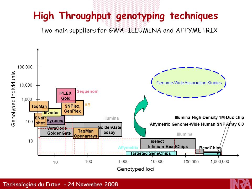 Technologies du Futur - 24 Novembre 2008 High Throughput genotyping techniques Genotyped loci 10 100 1,000 10,000 100,000 Genotyped individuals 1,000,