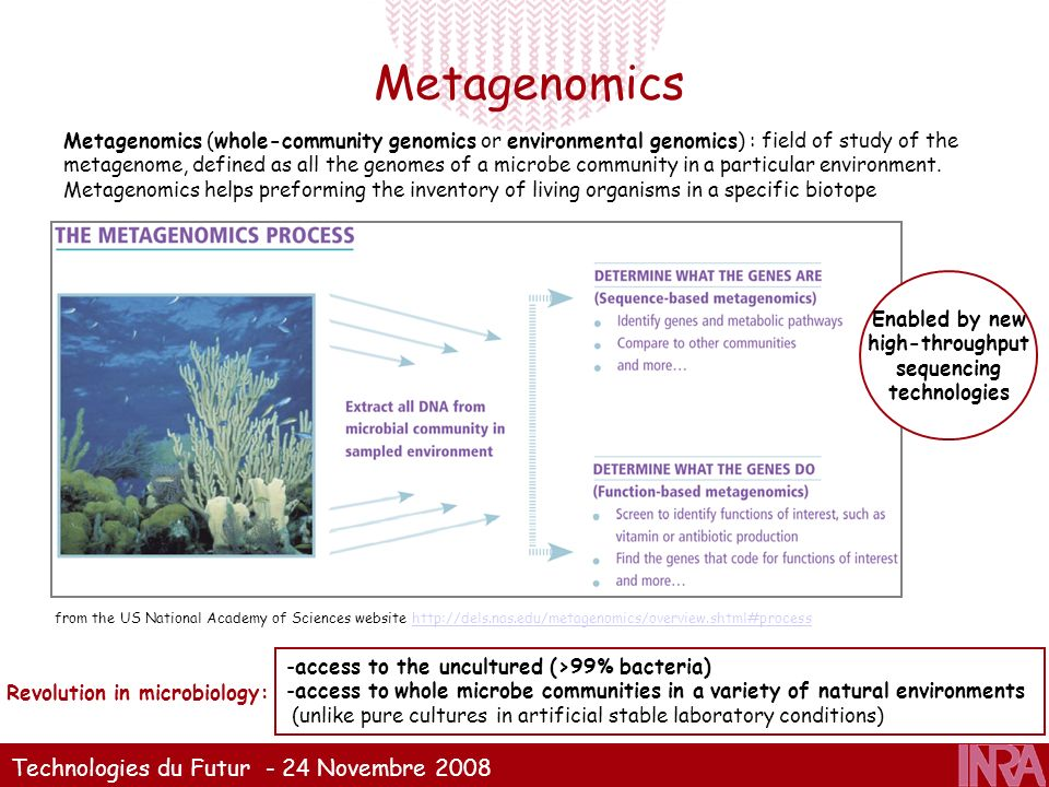 Technologies du Futur - 24 Novembre 2008 Metagenomics from the US National Academy of Sciences website http://dels.nas.edu/metagenomics/overview.shtml